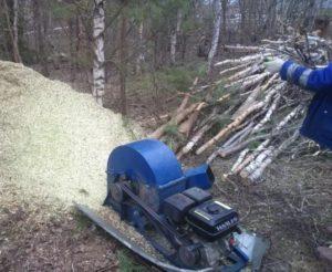 Утилизация деревьев